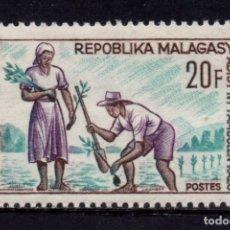 Sellos: MADAGASCAR 419** - AÑO 1966 - REFORESTACION. Lote 271416803