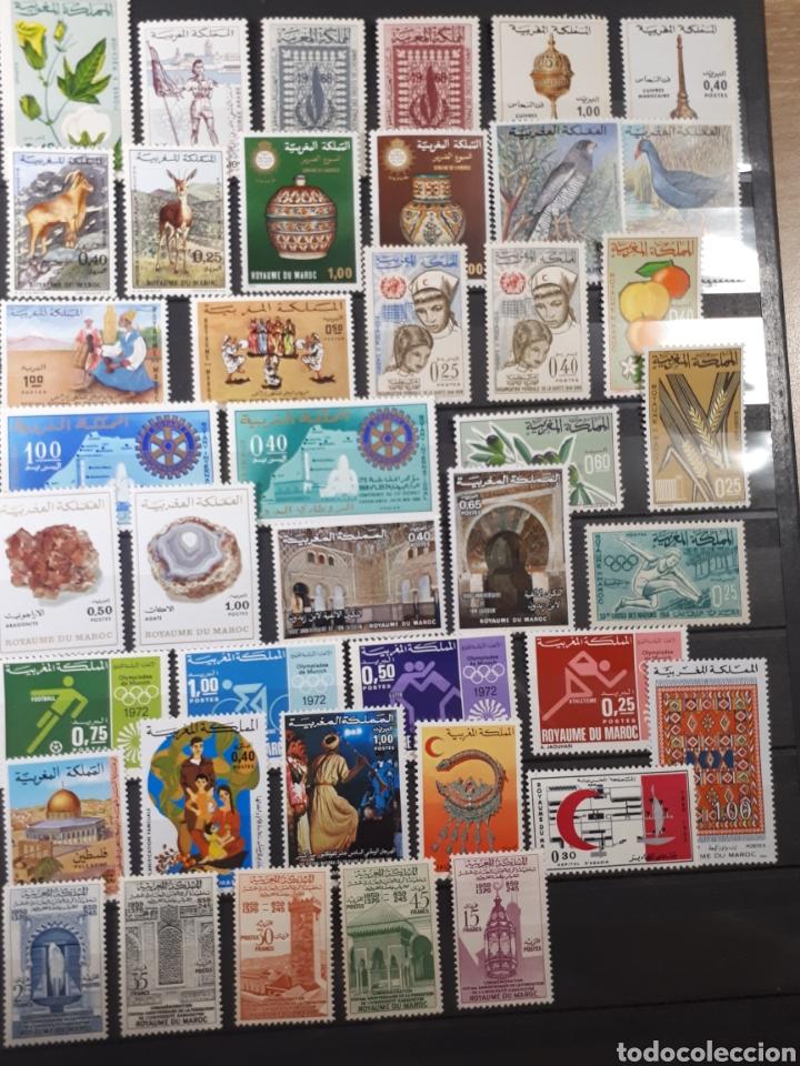 SELLOS NUEVOS CON GOMA ORIGINAL DE MARRUECOS LOT. P70 (Sellos - Extranjero - África - Marruecos)