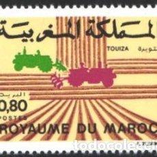 Sellos: MARRUECOS, 1983 YVERT Nº 953 /**/, ZONA EXPERIMENTAL CONTRA LA DESERTIZACIÓN. Lote 199434193
