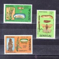 Sellos: SENEGAL 570/2 SIN CHARNELA, FAUNA, INSECTOS PERJUDICIALES A LAS PLANTAS, . Lote 24302727