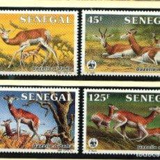 Sellos: SENEGAL 1986 MI 875 A 878 4 SELLOS MNH + 4 FDC + 4 TARJETAS MAXIMAS WWF. Lote 106912035