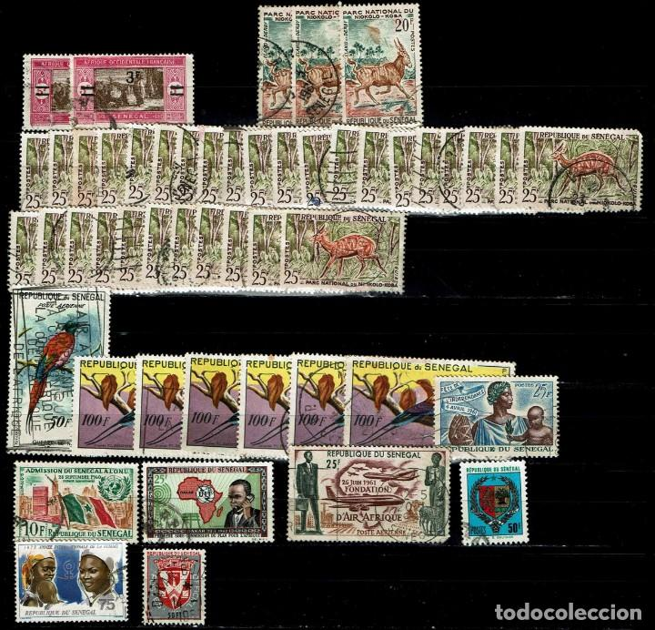 SENEGAL: LOTE 50 SELLOS (Sellos - Extranjero - África - Senegal)