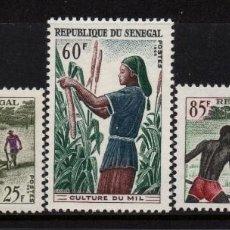 Sellos: SENEGAL 255/57** - AÑO 1965 - DESARROLLO RURAL. Lote 210117647