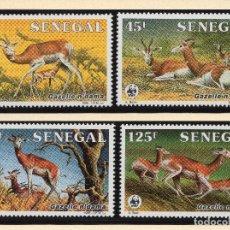 Sellos: SENEGAL SERIE MNH 1986 MICHEL 875 A 878 WWF. Lote 215480443