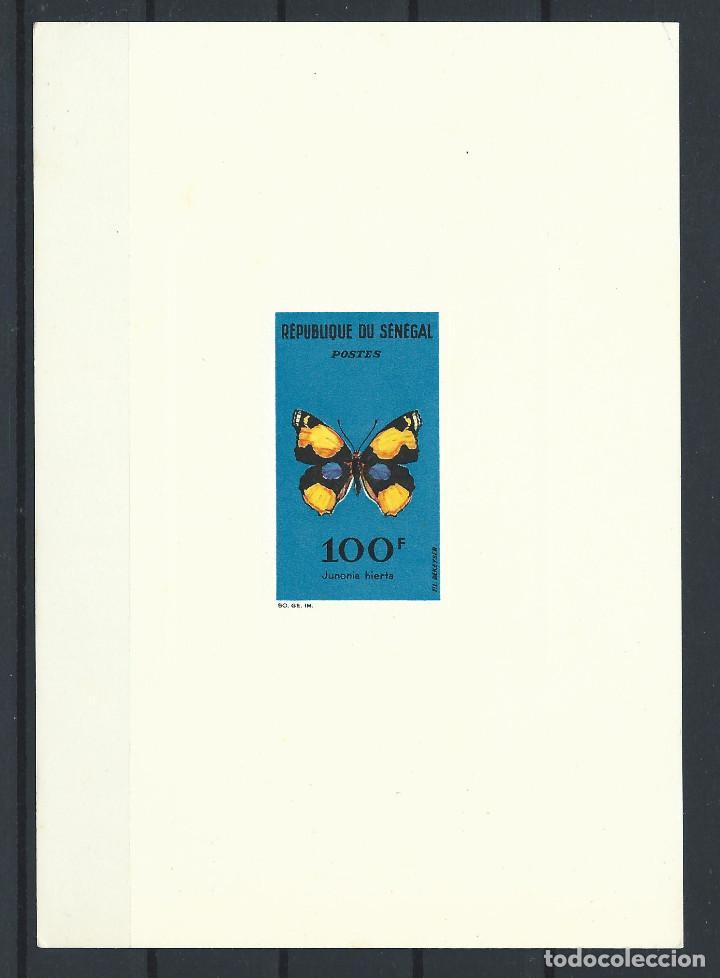 "SÉNÉGAL ÉPREUVE DE LUXE DU N°230 NEUF** (MNH) 1963 - PAPILLON ""JUNONIA HIERTA"" (Sellos - Extranjero - África - Senegal)"