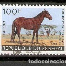 Sellos: REPÚBLICA DEL SENEGAL. FAUNA. CABALLO. Lote 295833563