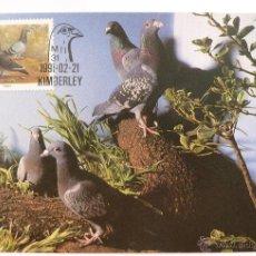Sellos: TARJETA POSTAL SUDAFRICA. PALOMAS. CRIA DE ANIMALES. KIMBERELY 1991.. Lote 45350043