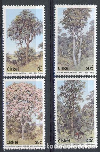 CISKEI 1983 IVERT 34/7 *** FLORA - ARBOLES INDIGENAS (I) (Sellos - Extranjero - África - Sudáfrica)