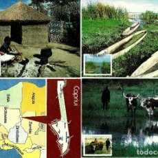 Sellos: AFRICA-SWA SUROCCIDENTAL 1986- YVERT 553/56 [SERIE(4TM) FRANJA, CAPRIVI] (TARJETA MÁXIMA). Lote 126594527