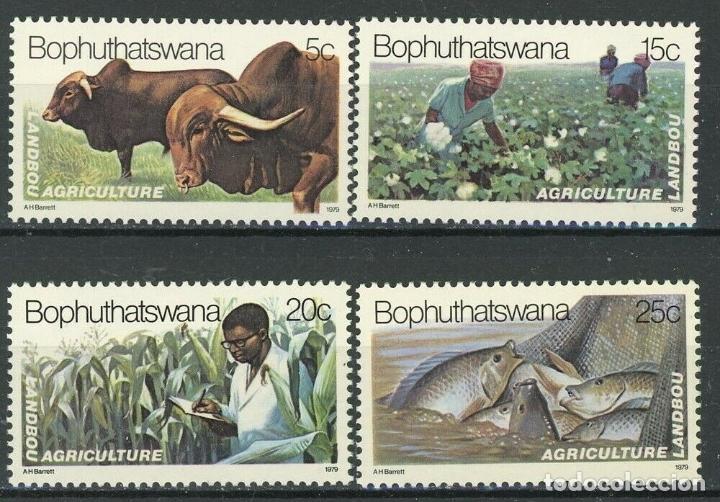 BOPHUTHATSWANA 1979 IVERT 51/54 *** AGRICULTURA Y PESCA EN BOPHUTHATSWANA (Sellos - Extranjero - África - Sudáfrica)