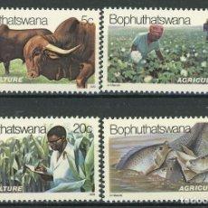 Sellos: BOPHUTHATSWANA 1979 IVERT 51/54 *** AGRICULTURA Y PESCA EN BOPHUTHATSWANA. Lote 176198697