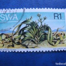 Sellos: -AFRICA SUDOESTE 1973, CACTUS, YVERT 333. Lote 177506444