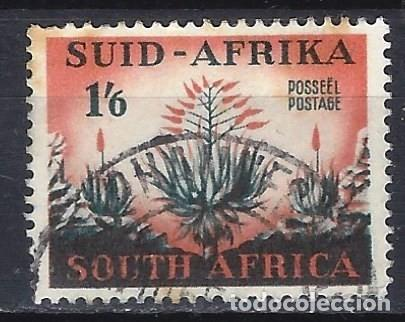 SUDÁFRICA 1953 - MOTIVOS LOCALES, PLANTA ALOE - SELLO USADO (Sellos - Extranjero - África - Sudáfrica)