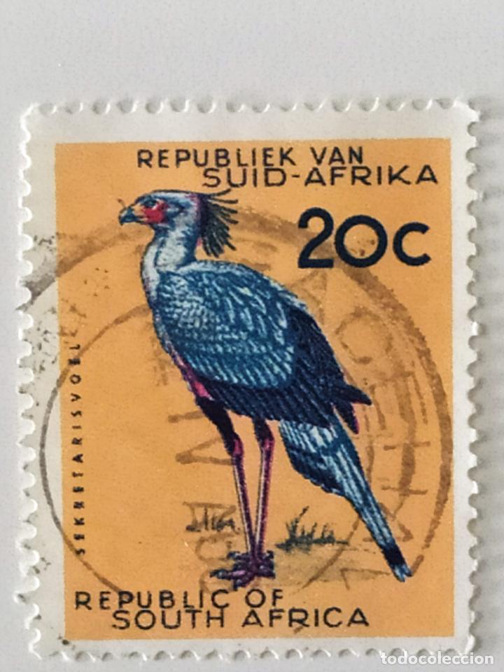 SELLO DE SUDAFRICA 20 C - 1964 - AVES SERPENTARIO - USADO SIN SEÑAL DE FIJASELLOS (Sellos - Extranjero - África - Sudáfrica)