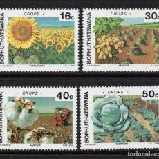 Sellos: BOPHUTHATSWANA 206/09** - AÑO 1988 - AGRICULTURA - CULTIVO INTENSIVO. Lote 262265005