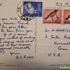 Sellos: O) 1965 SUDÁFRICA, CRIMSON BIRD, BIRD, VERTIR ORO, CIUDAD DEL CABO, TARJETA POSTAL CIRCULADA A EE. U. Lote 275342233