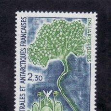 Sellos: TIERRAS AUSTRALES & ANTARTICAS FRANCESA 175 SIN CHARNELA, FLORES ANTARTICA. Lote 23931756