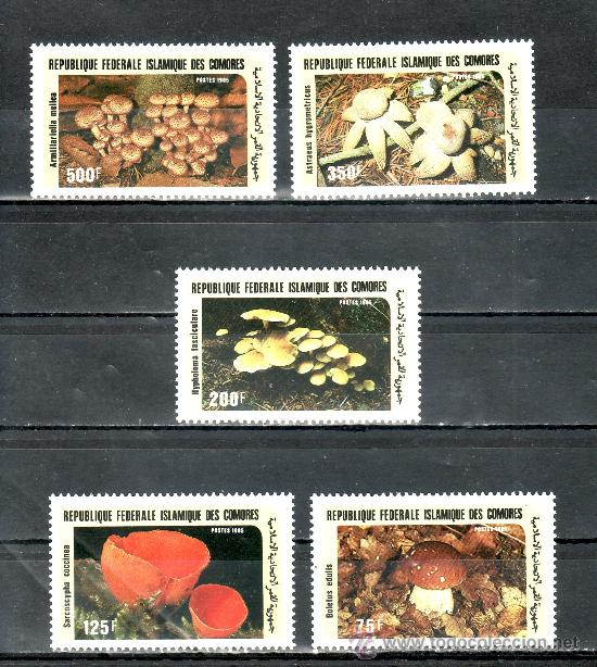 COMORES 435/9 SIN CHARNELA, FLORES, SETAS, CHAMPIÑONES, (Sellos - Extranjero - África - Otros paises)