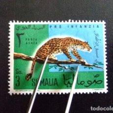 Sellos: SOMALIE SOMALIA 1960 LEOPARD LEOPARDO YVERT Nº PA 7 ** MNH. Lote 69123913