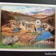 Stamps - LESOTHO 1981 PROTECCIÓN VIDA SALVAJE WWF Yvert BLOC 12 ** MNH - 90588140