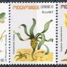 Sellos: MOZAMBIQUE 1992 IVERT 1217/19 *** FLORA - PLANTAS TIPICAS. Lote 136057122