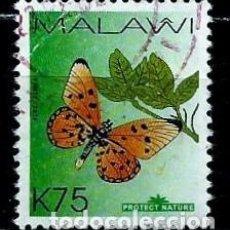 Sellos: MALAWI SCOTT: 800-(2007) (MARIPOSA:ACRAEA ARDIENTE (ACRAEA ACRITA) USADO. Lote 155998142