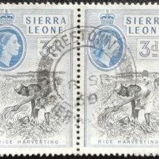 Francobolli: 1955. SIERRA LEONA. 185. RECOLECCIÓN DE LA COSECHA. SELLOS EN PAREJA. USADO.. Lote 185198888