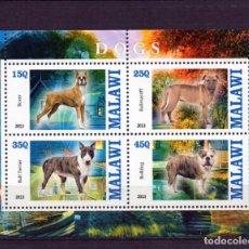 Sellos: ++ HOJA BLOQUE , HB DE MALAWI AÑO 2013 NUEVO PERROS DOGS. Lote 199674160