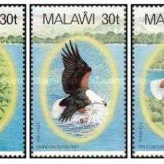 Sellos: SELLOS MALAWI NUEVOS 1983, SERIE AVES,. Lote 201945935
