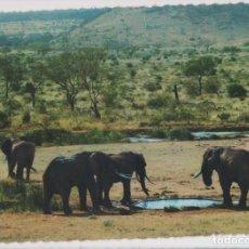 Sellos: NAIROBI, ELEFANTES. Lote 205672063