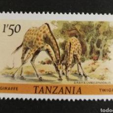 Sellos: TANZANIA, JIRAFAS 1980 MNH (FOTOGRAFÍA REAL). Lote 208678560