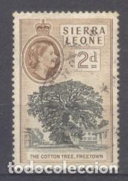 SIERRA LEONA, ÁRBOL DE ALGODÓN, FREETOWN (Sellos - Extranjero - África - Otros paises)
