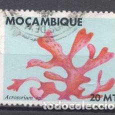 Sellos: MOZAMBIQUE, COLONIA PORTUGUESA, 1983, FLORA MARINA, USADO. Lote 245274370