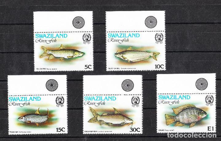 Sellos: 1980 Swaziland SG 359/63 SERIE COMPLETA X 2 ** - Foto 2 - 286175403