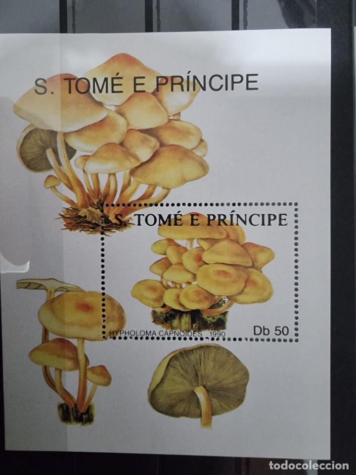 SELLO S.TOME E PRINCIPE NUEVO (Sellos - Extranjero - África - Otros paises)