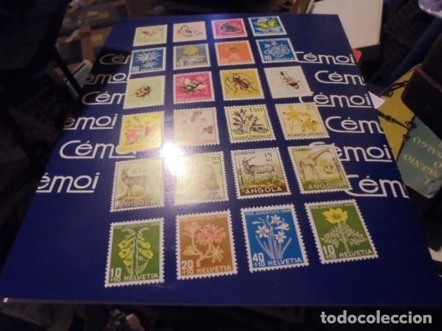 Sellos: ALBUM VACIO CEMOI - TOTALMENTE NUEVO A ESTRENAR - AÑOS 70 / 80 - ENVIO GRATIS - Foto 2 - 119543507