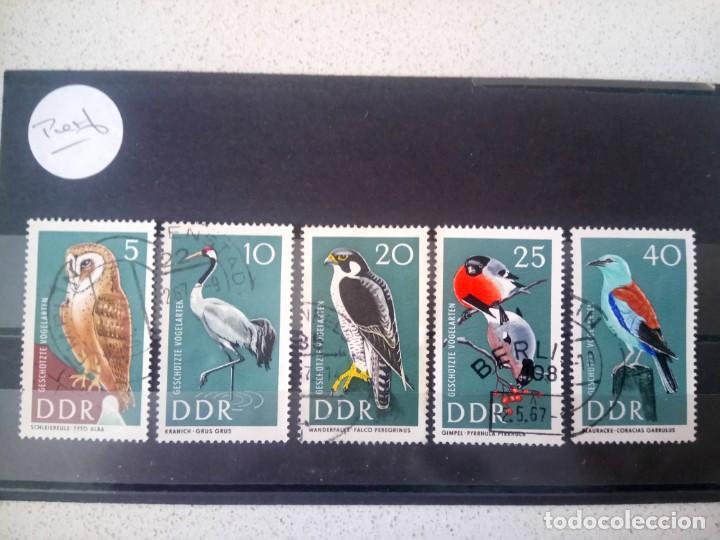 ALEMANIA, REPÚBLICA DEMOCRÁTICA, RDA, 1967, FAUNA, PÁJAROS (Sellos - Extranjero - Europa - Alemania)