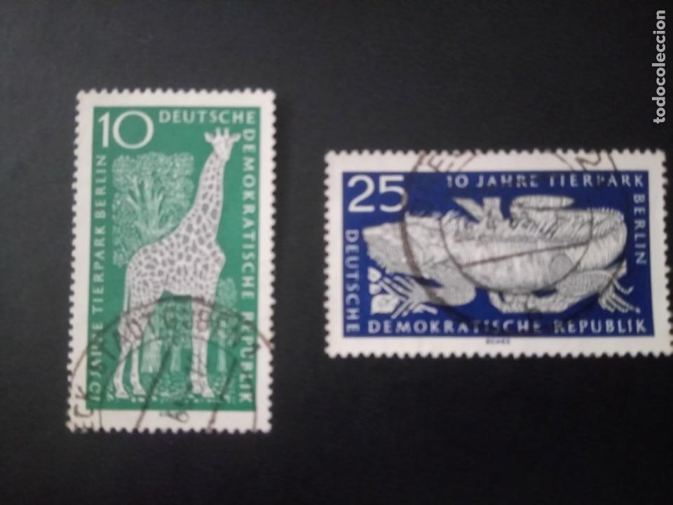 ALEMANIA, REPÚBLICA DEMOCRÁTICA, DDR, 1965, ZOO DE BERLÍN, YT 1093/1094 (Sellos - Extranjero - Europa - Alemania)