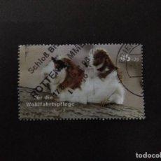 Sellos: ALEMANIA 2007.GUINEA PIG (CAVIA PORCELLUS). YT:DE 2455. Lote 222605452