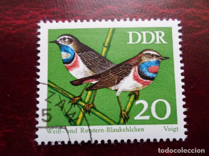 *ALEMANIA, DDR, 1973, PROTECCION DE LA NATURALEZA, YVERT 1534 (Sellos - Extranjero - Europa - Alemania)