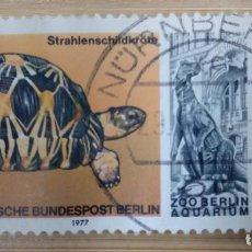 Sellos: ALEMANIA BERLIN 1977. : MI:DE-BE 554,. Lote 269441613