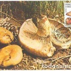 Sellos: TARJETA MAXIMA ANDORRA 1983 NISCALO NATURALEZA EDIFIL 170 MAXIMUM CARD TC10604. Lote 143124505