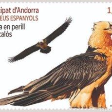 Sellos: ANDORRA ESPAÑOLA 2021 EUROPA FAUNA EN PELIGRO QUEBRANTAHUESOS - NUEVO MNH. Lote 260764625