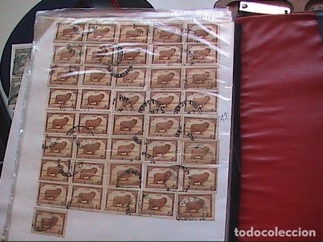 Sellos: LOTE DE MAS DE 700 SELLOS ANTIGUOS DE LA REPÚBLICA ARGENTINA. - Foto 9 - 131096392