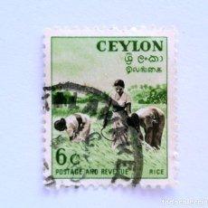 Sellos: SELLO POSTAL CEILAN - CEYLON 1954, 6 C , HARVESTING RICE , USADO. Lote 154597394