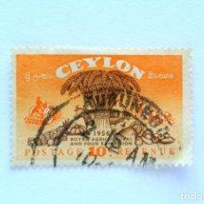 Sellos: SELLO POSTAL CEILAN - CEYLON 1955, 10 C , EXHIBICION REAL DE AGRICULTURA Y ALIMENTOS, USADO. Lote 154612198