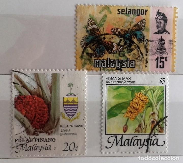MALASIA: LOTE DE TRES SELLOS DIFERENTES USADOS (Sellos - Extranjero - Asia - Otros paises)