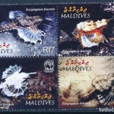 Sellos: MALDIVAS 2004 IVERT 3654/7 *** PROTECCIÓN DE LA NATURALEZA - FAUNA MARINA - PEZ DRAGON. Lote 221682500