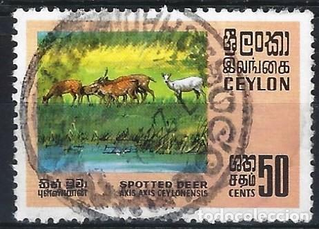 CEYLÁN 1970 - FAUNA, CIERVO MOTEADO - USADO (Sellos - Extranjero - Asia - Otros paises)