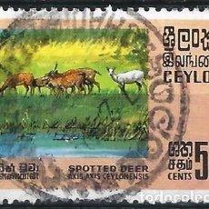 Selos: CEYLÁN 1970 - FAUNA, CIERVO MOTEADO - USADO. Lote 246135475